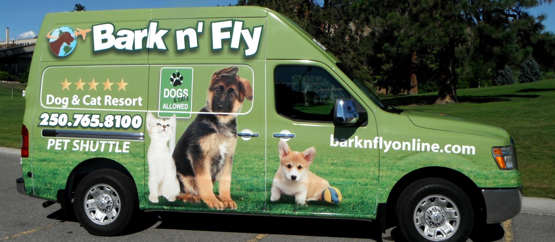 Bark N Fly Dog Daycare Boarding Kennel Kelowna Bc